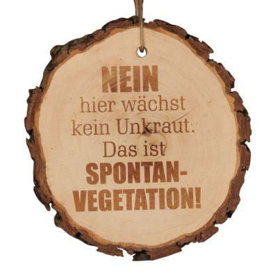 """Baumscheibe """"Nein hier wächst kein Unkraut. Das ist Spontanvegetation!"""""""